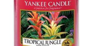 Yankee Candle Large Jars