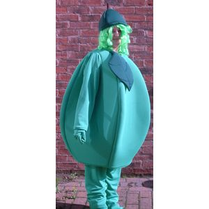 Apple Mascot Ex Hire Sale Costume