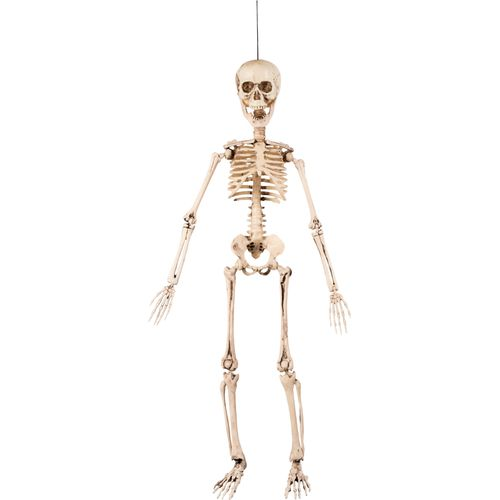 Movable Skeleton Hanging Decoration 50cm Halloween Party Accessory