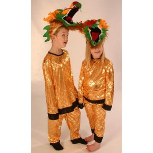 Childs Ex Hire Dragon Suit Age 5-8 Years