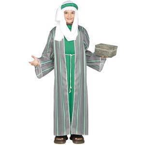 Childs Wise Man Costume (Green) Large