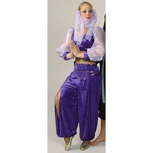 Arabian Princess Ex Hire Sale Costume