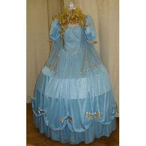 Cinderella Hooped Ex Hire Sale Costume