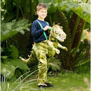 Childs Ride on Dinosaur Costume Age 6-8 Years