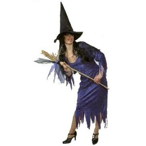 Velvet Witch Costume & Accessories Size 12