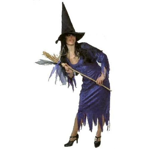 fancy dress and halloween costume purple Velvet Witch Dress Size 12-Including Accessories