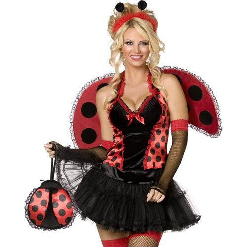 lady bird sexy fancy dress costume size 12-14