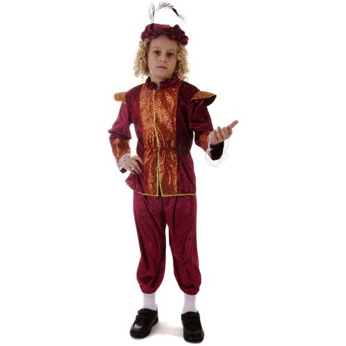 Tudor Boy Age 7-9 Years Childrens Medieval Fancy Dress Costume