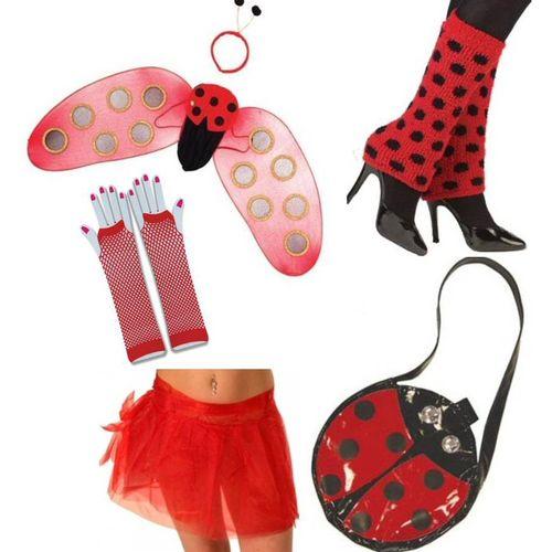 Lady Bird Fancy Dress Acesssory Kit