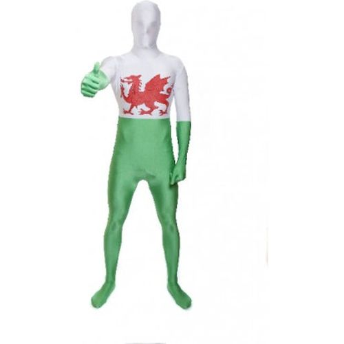 Welsh Wales Fancy Dress Football Support Euro 2016 Costume Outfit