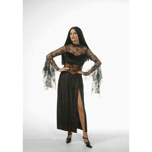 Spider Cobweb Queen Ex Hire Costume Halloween Fancy Dress